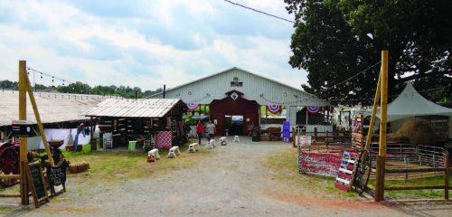 grandma_s-barnyard_3